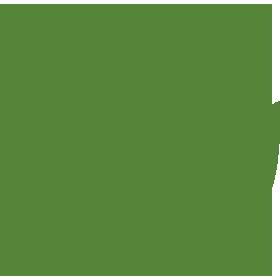 Rose Icon - High Quality Rose Bushes
